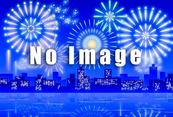 真岡市夏祭り大花火大会の写真
