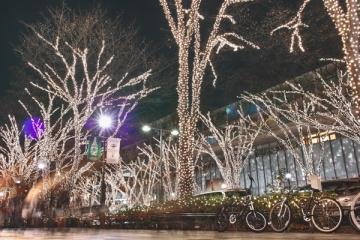 原宿表参道のイルミネーションの写真
