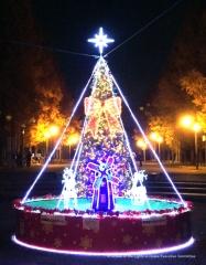 花博記念公園鶴見緑地 中央噴水広場のイルミネーションの写真