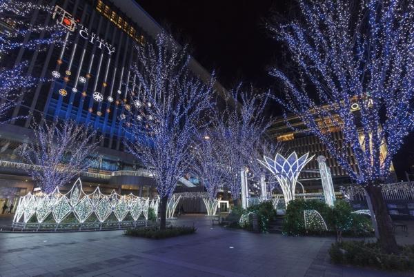 JR博多駅前広場のイルミネーションの写真