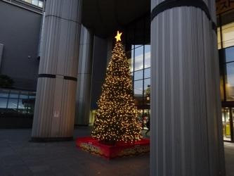 OCAT(大阪シティエアターミナル) のイルミネーションの写真