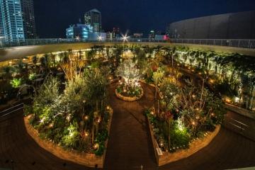 神戸国際会館SOL(1F)サンクンガーデン、屋上庭園そらガーデン(11F)のイルミネーションの写真