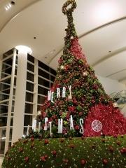 阪急西宮ガーデンズ 1Fウェルカムガーデンのイルミネーションの写真