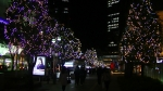 名古屋駅地区のイルミネーションの写真