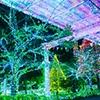 電球10万球以上のイルミネーションの写真