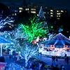 遊園地・テーマパークのイルミネーションの写真
